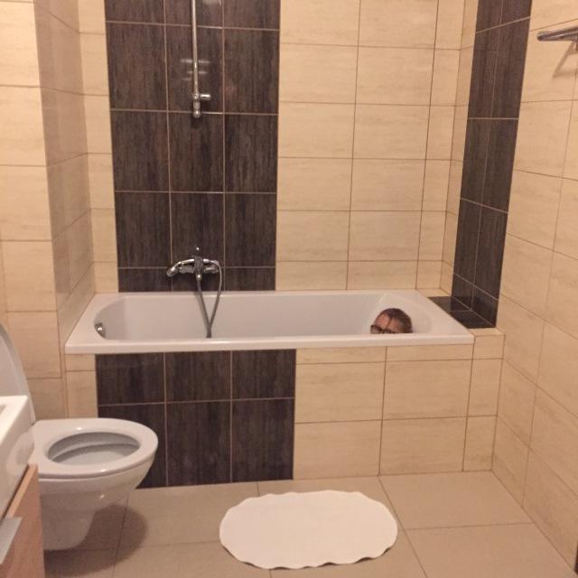 Badeværesle